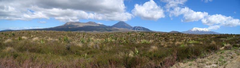 国家新的公园tongariro西兰 库存照片