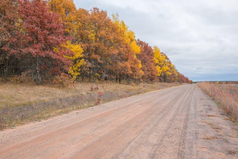 国家石渣路在有秋天颜色棕色秋天的树的农村威斯康辛-黄色,橙色,红色和 库存照片