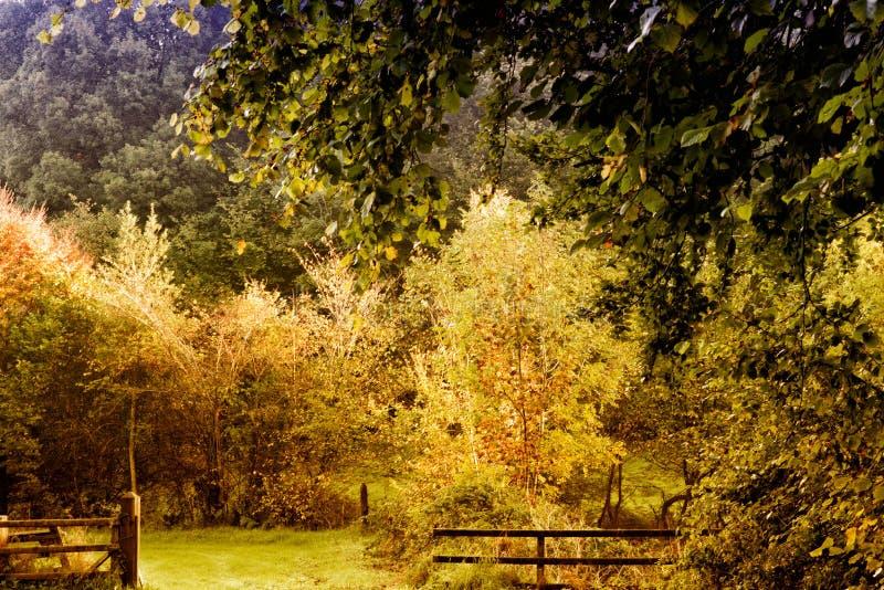 国家边美好的风景一秋天天 库存图片