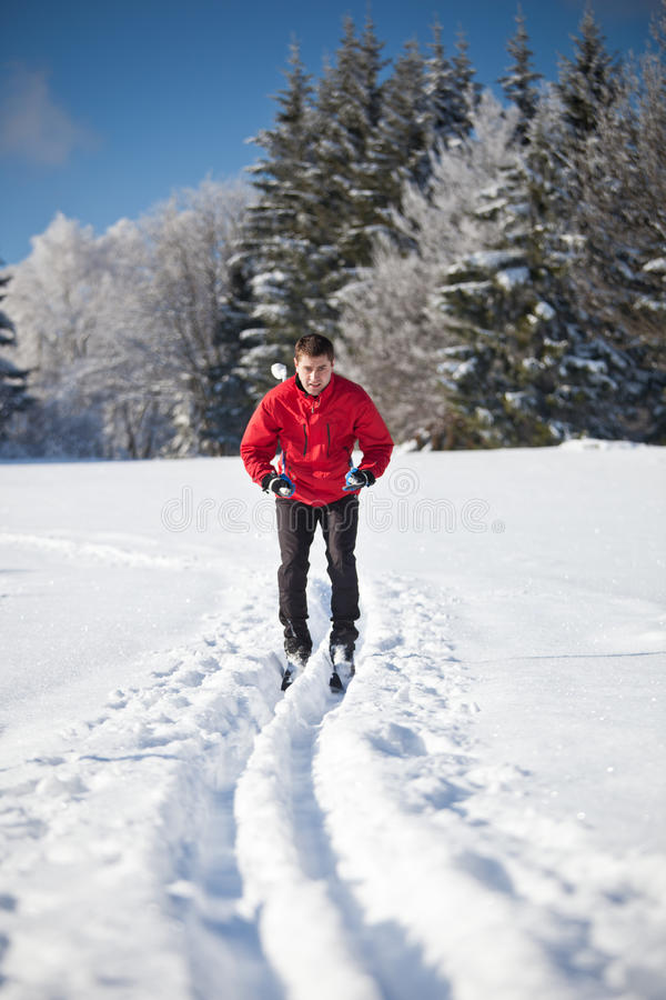 Download 国家(地区)交叉人滑雪年轻人 库存照片. 图片 包括有 乡下, 可爱, 外面, 滑雪, 节假日, 横向, 生活方式 - 22354244