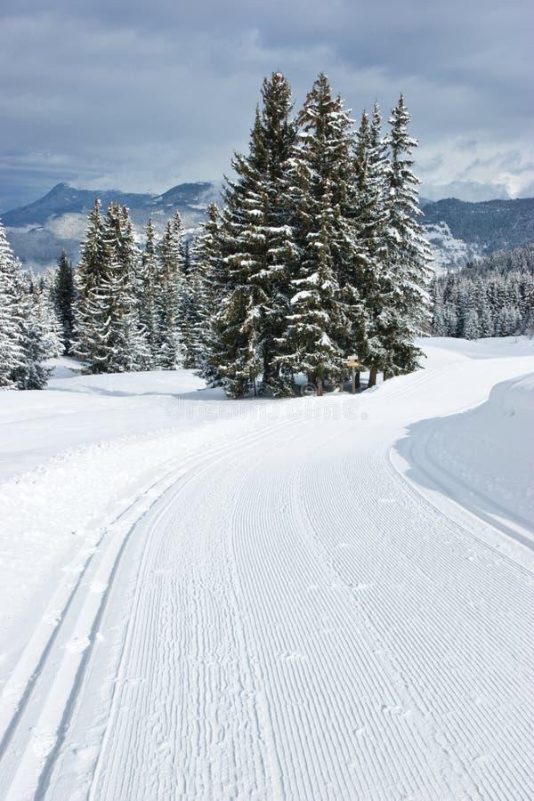 国家(地区)交叉滑雪跟踪 库存照片