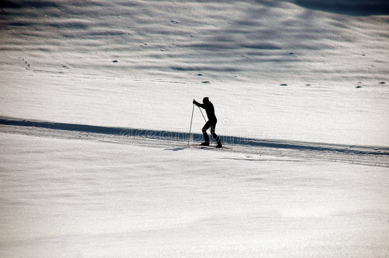 国家(地区)交叉滑雪 库存照片