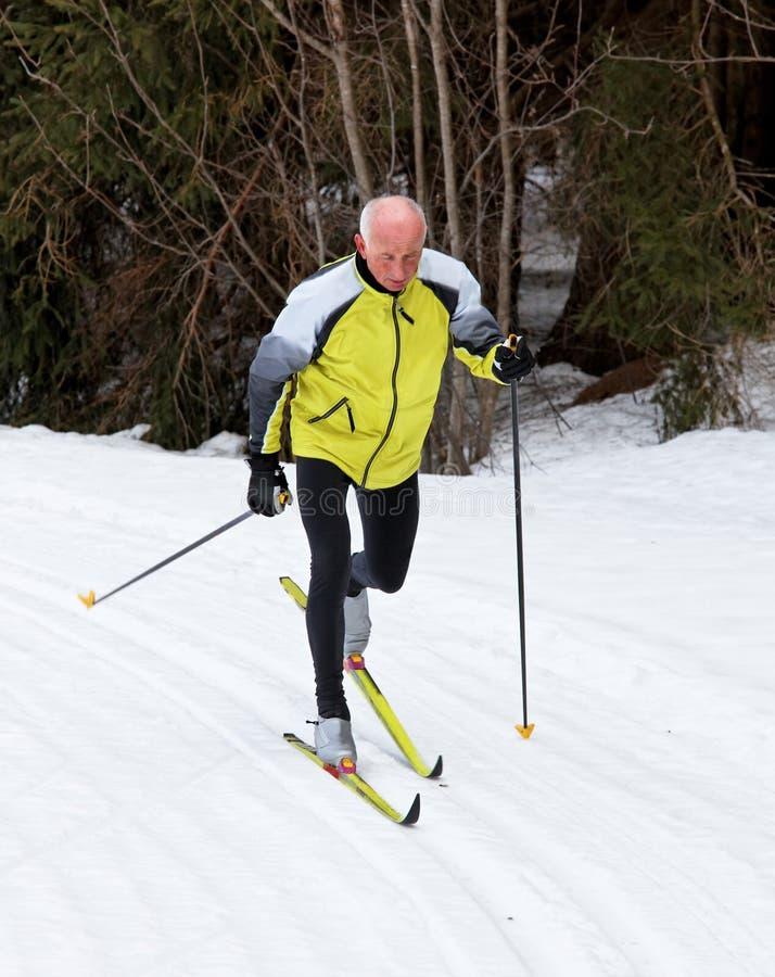 国家(地区)交叉男性高级滑雪 免版税图库摄影