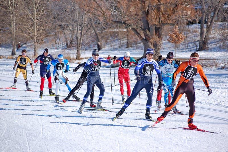 国家(地区)交叉种族滑雪 免版税库存图片