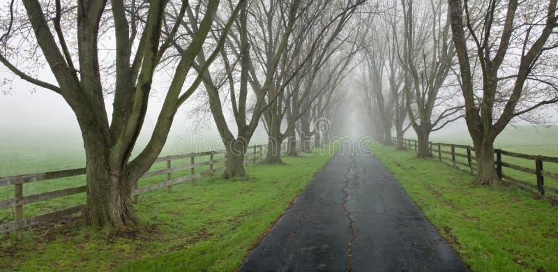 国家(地区)运输路线排行了结构树 免版税图库摄影