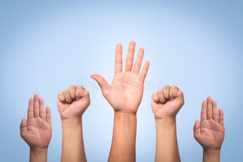 国际国际人权日概念,培养手 免版税图库摄影