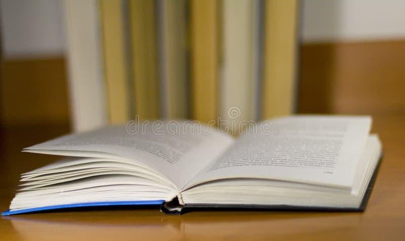 图书馆 免版税库存照片