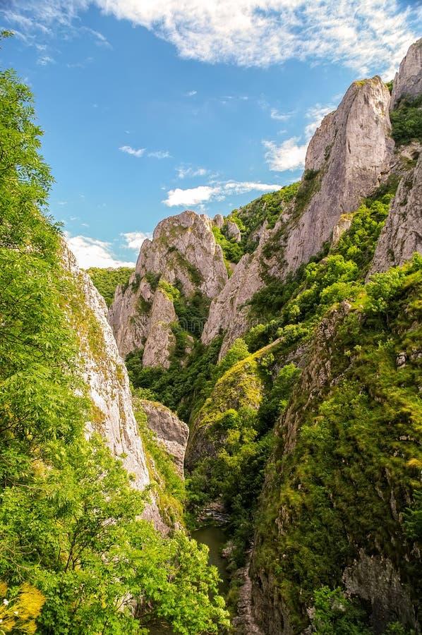 图尔达峡谷在特兰西瓦尼亚罗马尼亚 库存照片