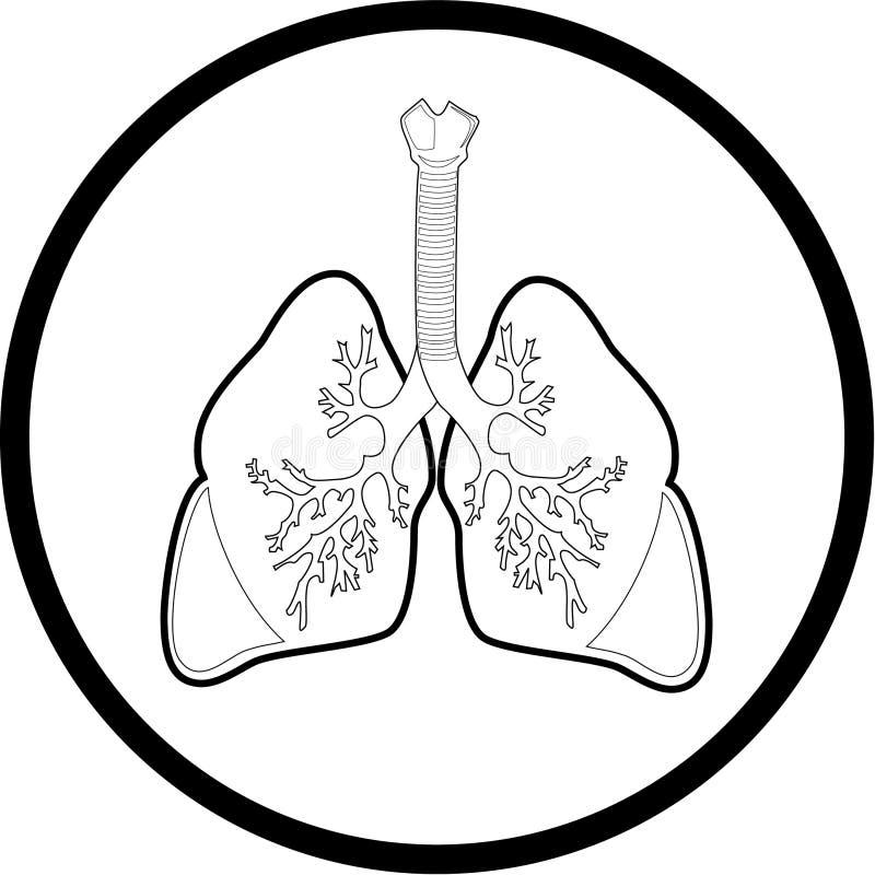 图标肺向量 库存例证