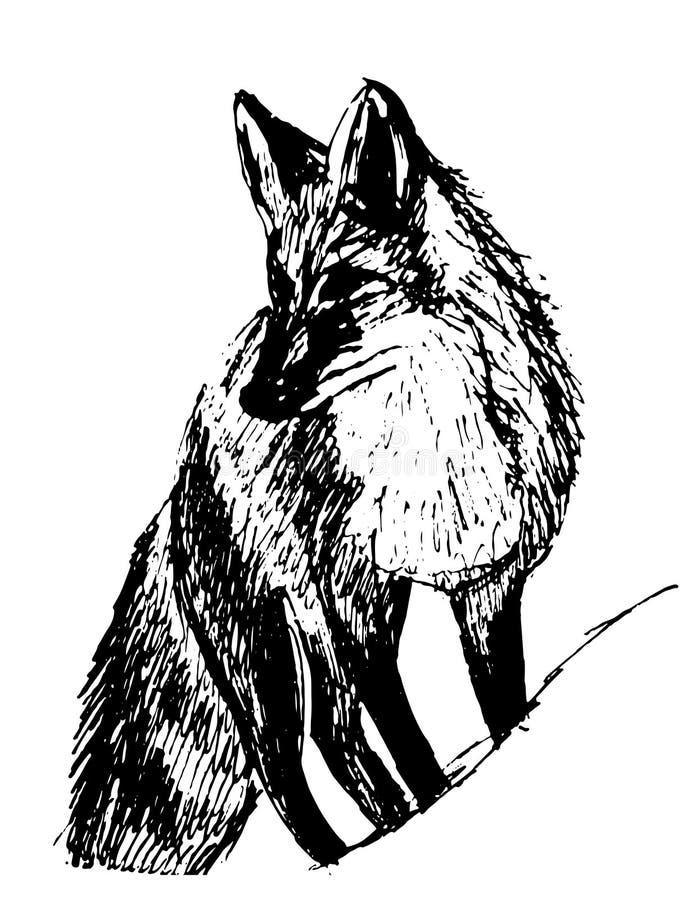 图片狐狸剪影手拉的例证 库存例证
