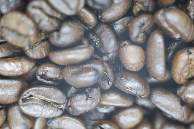 图片的新鲜的咖啡豆 库存照片