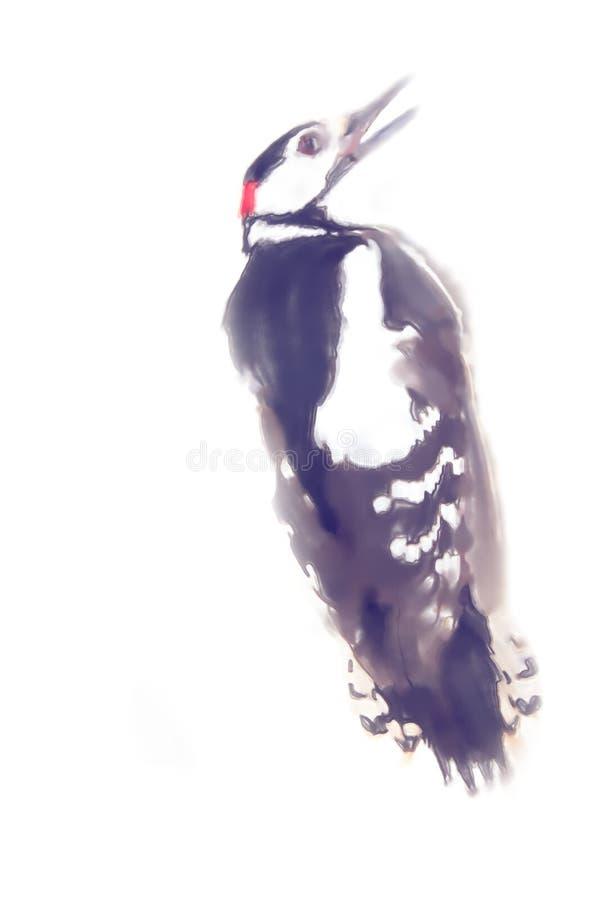 图画水彩样式 更加极大的被察觉的啄木鸟 皇族释放例证