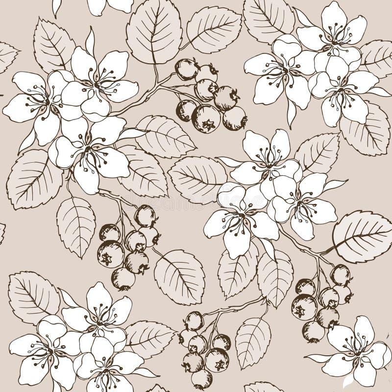 图画递花和莓果无缝的样式 逗人喜爱的与花和莓果唐棣属的夏天无缝的样式 库存例证