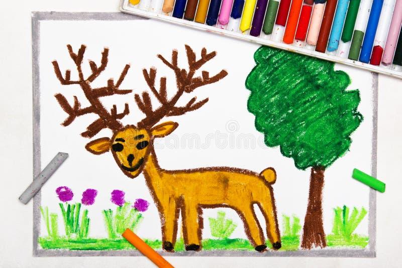 图画:与大鹿垫铁的逗人喜爱的棕色鹿 向量例证