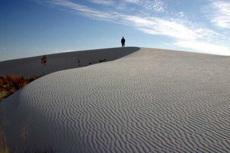图空白孤立的沙子 免版税库存照片