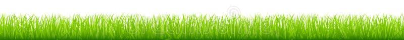 图表平直的绿色草甸长的水平的横幅 皇族释放例证