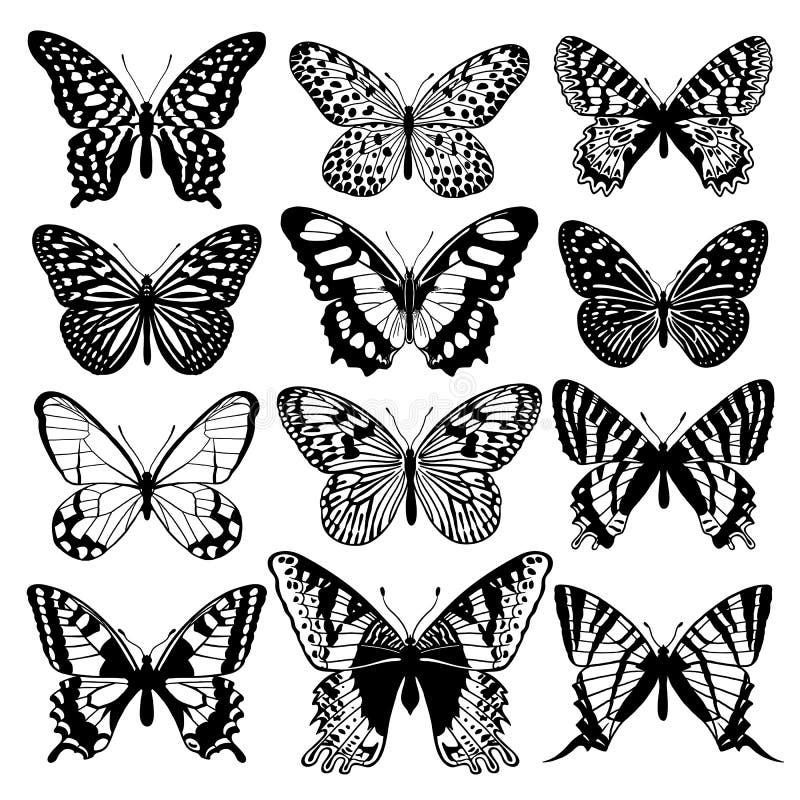 图表抽象蝴蝶集合 黑色白色 向量例证