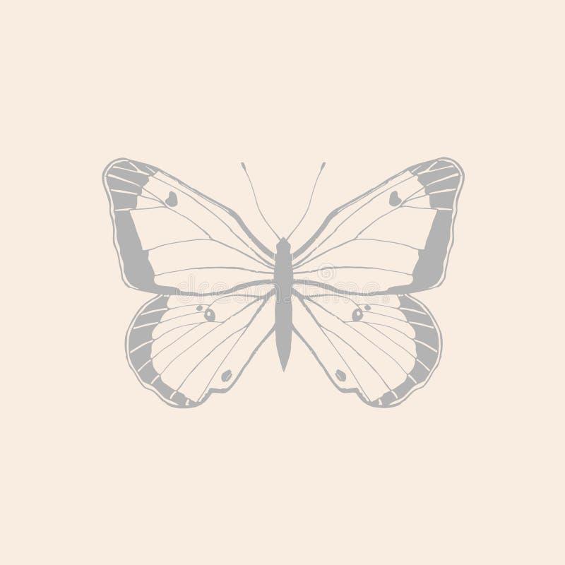 图表蝴蝶 向量例证