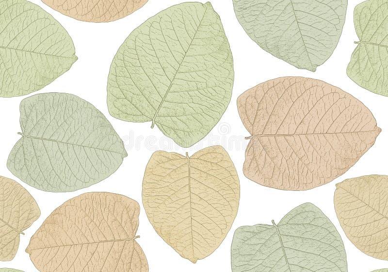 图解地风格化叶子无缝的样式印刷品  免版税库存图片