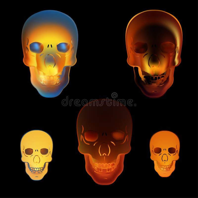 图象例证在黑背景的火头骨 向量例证