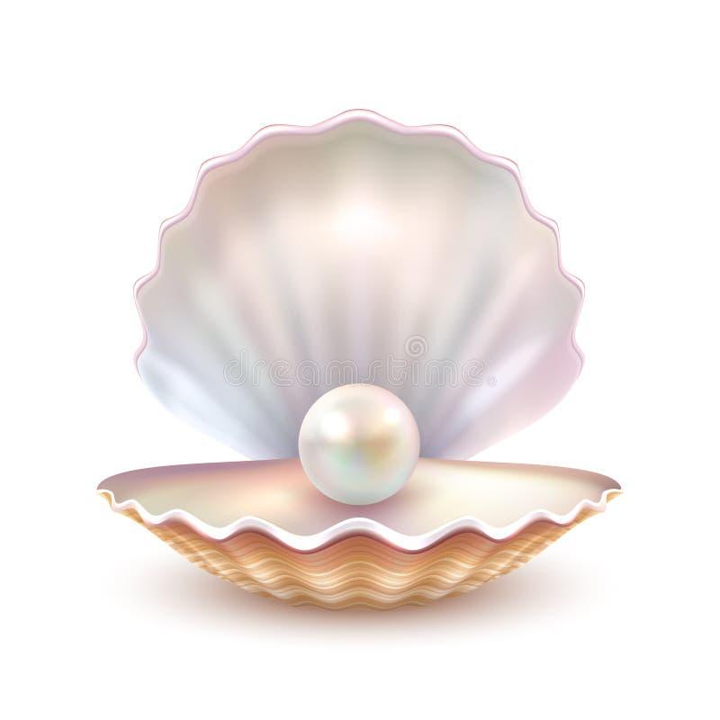 图象的珍珠壳现实关闭 皇族释放例证