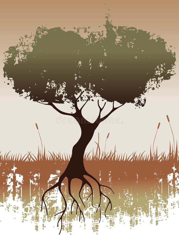 图象结构树 库存例证