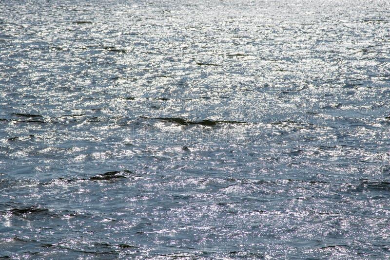 图象背景与小波浪和阳光ref的水表面 库存照片