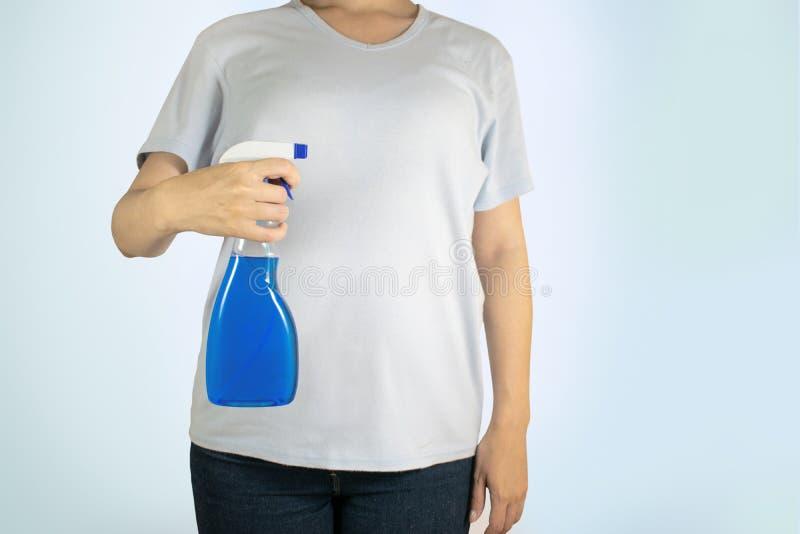 图象视图上面,平的被放置的洗涤剂 服务的概念清洗的公寓和前提的,洁净 T恤杉的妇女 库存照片