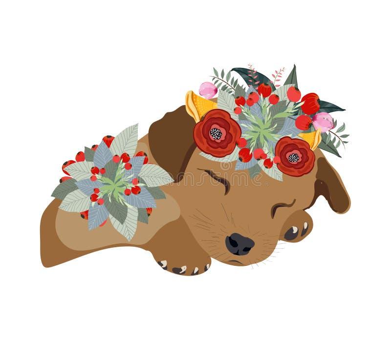 画图铅笔狗面孔,与美丽的花在头,花卉花圈的短尾猿画象 库存例证