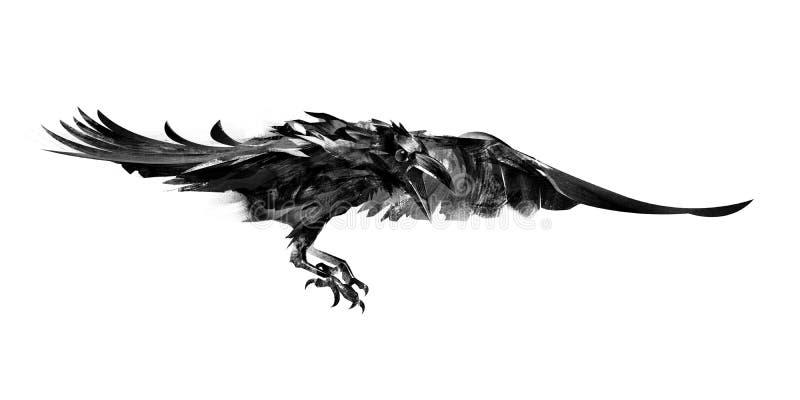 图画在白色背景的飞行乌鸦 向量例证