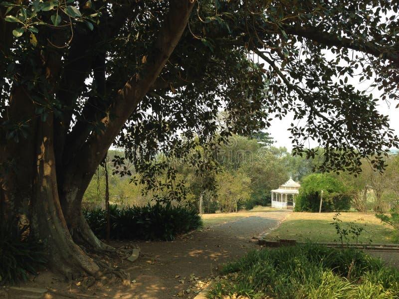 圆形建筑的庭院 库存图片