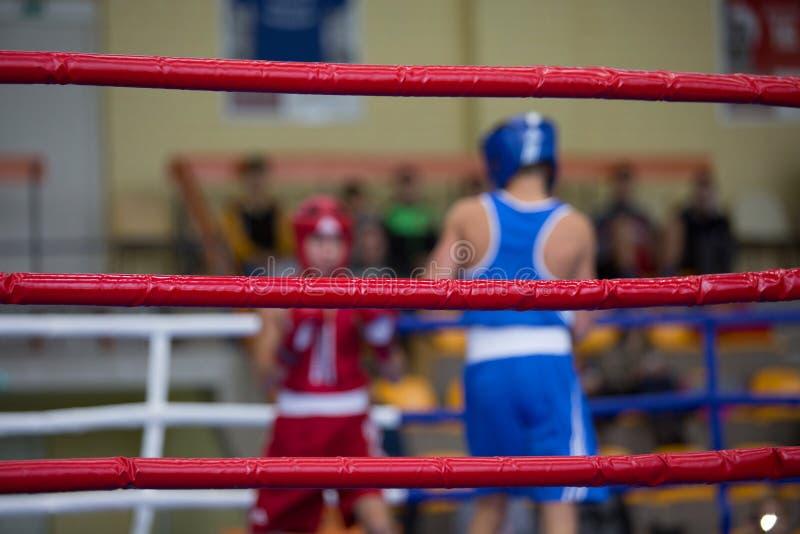 圆环的两位拳击手 免版税图库摄影