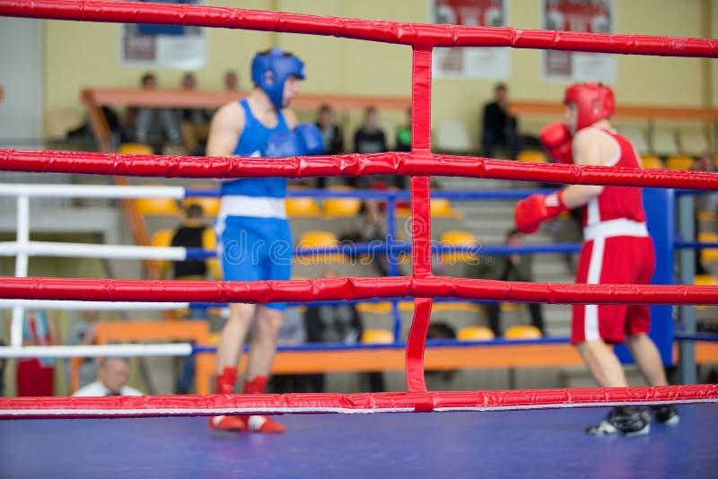 圆环的两位拳击手 免版税库存照片