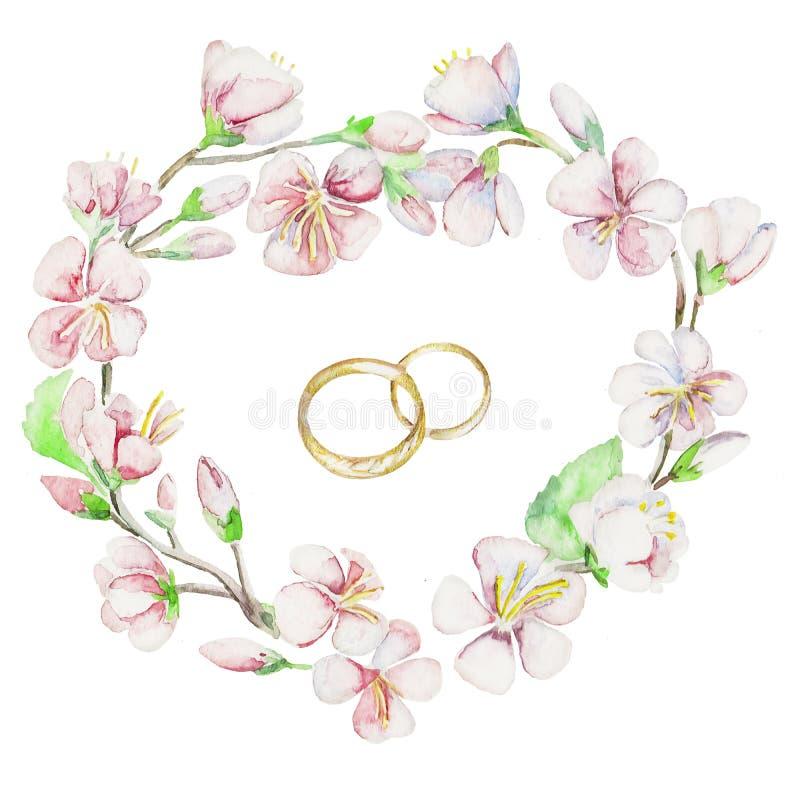 圆环,樱桃,苹果,花 水彩被隔绝的对象 向量例证