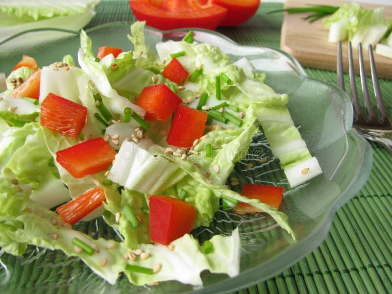圆白菜中国人沙拉 库存照片