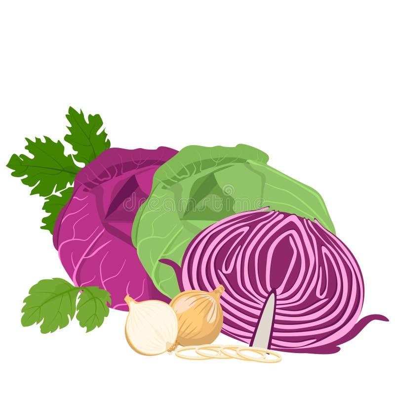 圆白菜和葱 库存例证