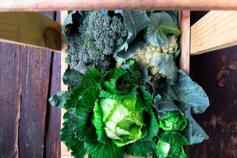 圆白菜品种在木篮子的在棕色背景 收获顶视图 库存照片