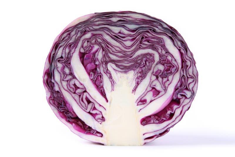 圆白菜紫色纹理 库存照片