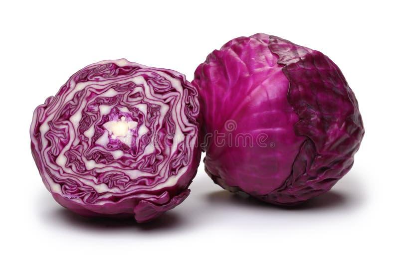 圆白菜红色 免版税库存图片