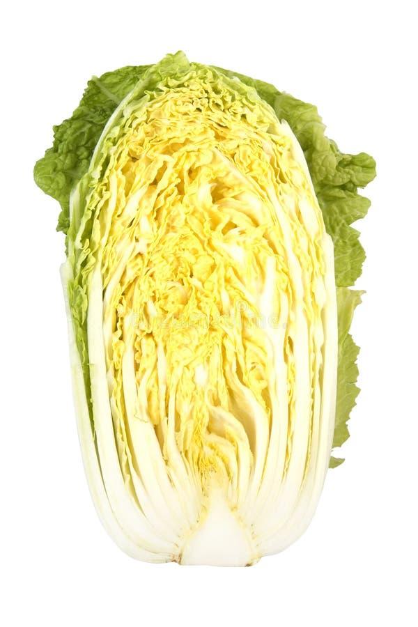 圆白菜 免版税库存照片