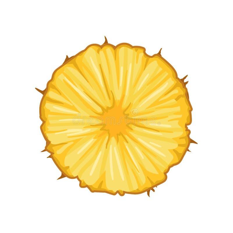 圆的切片水多的菠萝 可口热带水果 包装的汁液的,电视节目预告飞行物详细的平的传染媒介设计 向量例证
