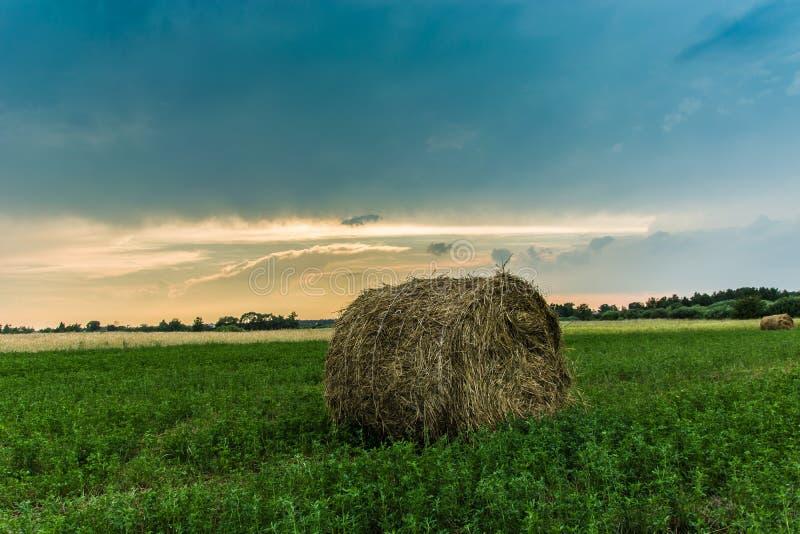 圆的干草捆在日落的一个绿色草甸 免版税库存图片
