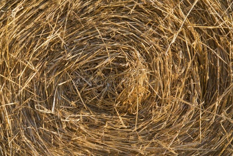 圆的干草捆的图象为作为背景的使用 免版税库存照片