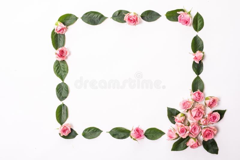 圆的框架由桃红色和米黄玫瑰,绿色叶子,分支,在白色背景的花卉样式做成 平的位置,顶视图 valentin 免版税图库摄影