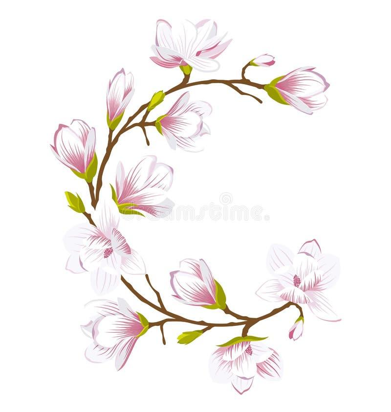 圆的框架由美丽的木兰花制成 库存例证