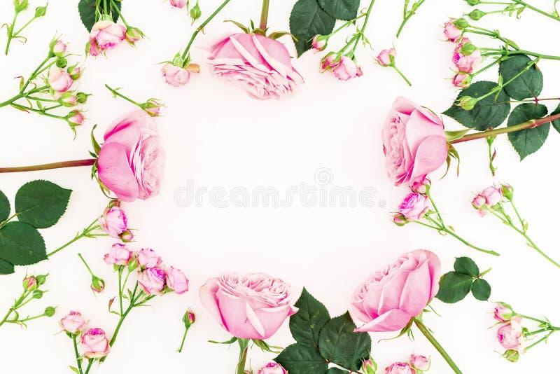 圆的花卉框架由桃红色玫瑰做成在白色背景 平的位置,顶视图 情人节构成 库存图片