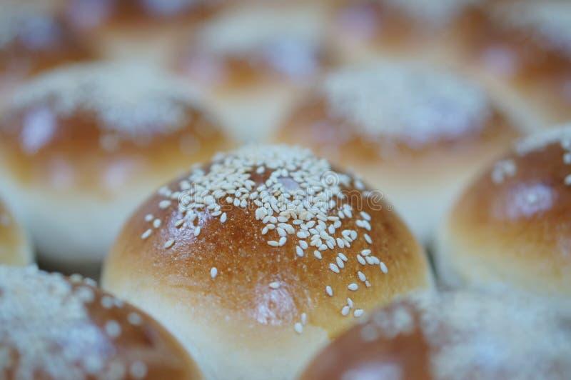 圆的面包与芝麻籽的 免版税库存照片