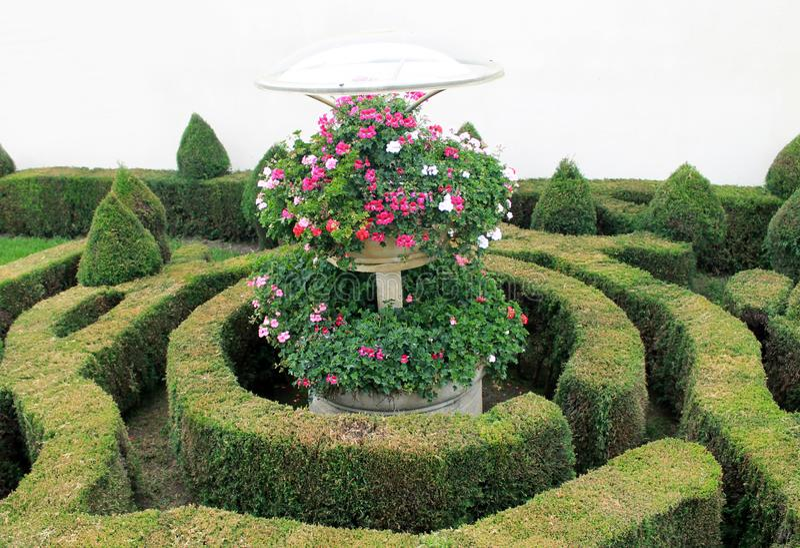 圈子的一个庭院与花 库存图片
