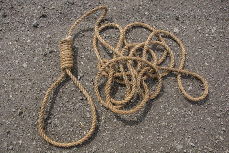 绳索圈  库存照片