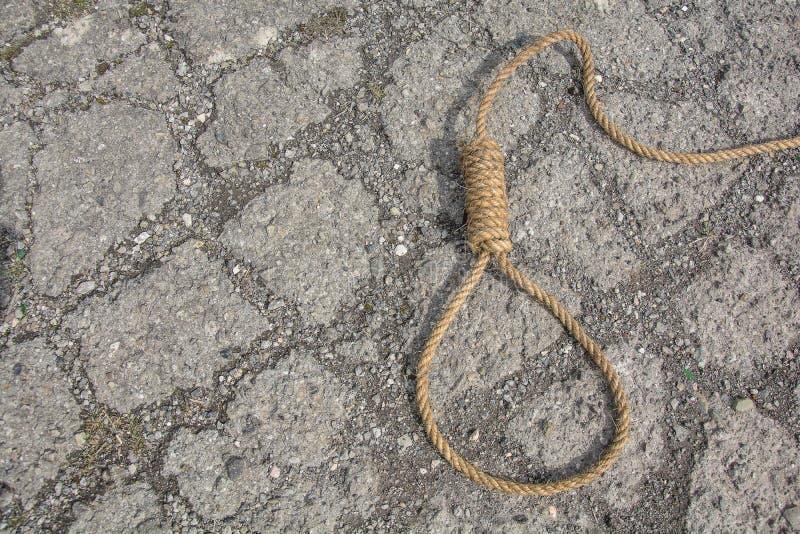 绳索圈  库存图片